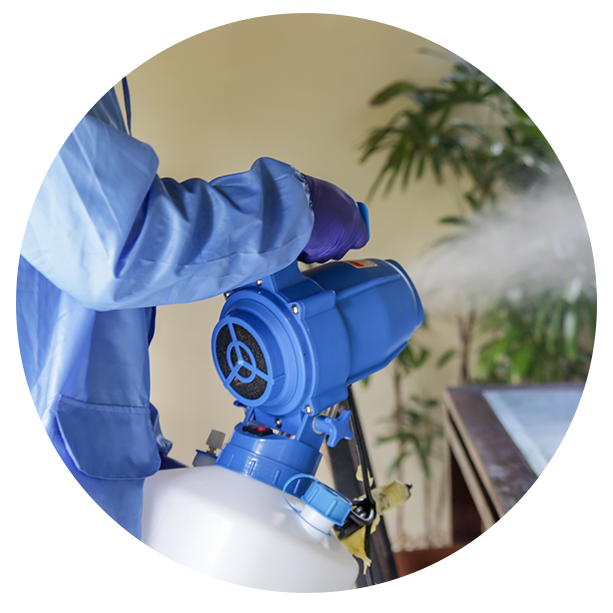 Professional cleaner in blue safety suit using electrostatic fogging machine